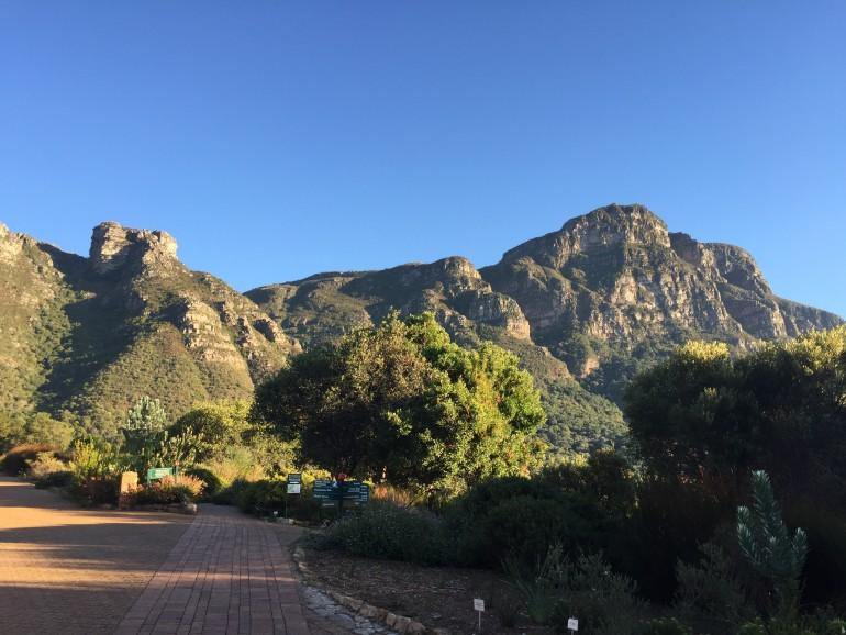 Travellers Insight Reiseblog Tafelberg Kirstenbosch Gardens