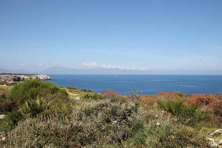 Travellers Insight Reiseblog Palermo Capo Rama