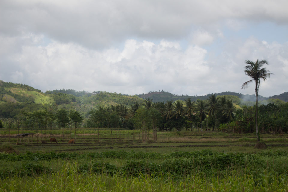Travellers Insight Reiseblog Lombok Landschaft