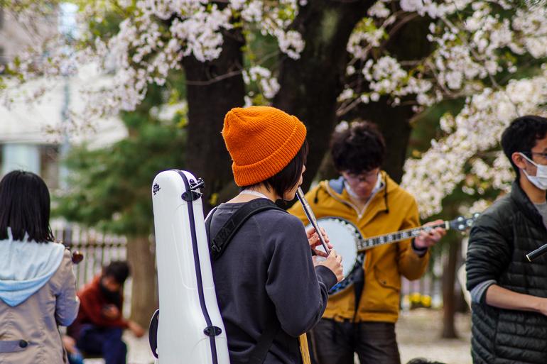 Travellers Insight Reiseblog Japan Tokio Musizieren unterm Kirschbaum
