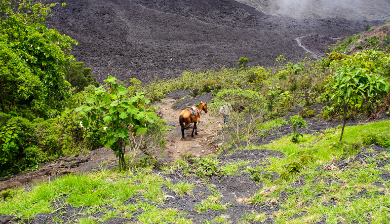 Travellers-Insight-Reiseblog-Guatemala-Rundreise-Webstuhl-Vulkan-Pacaya-Pferd