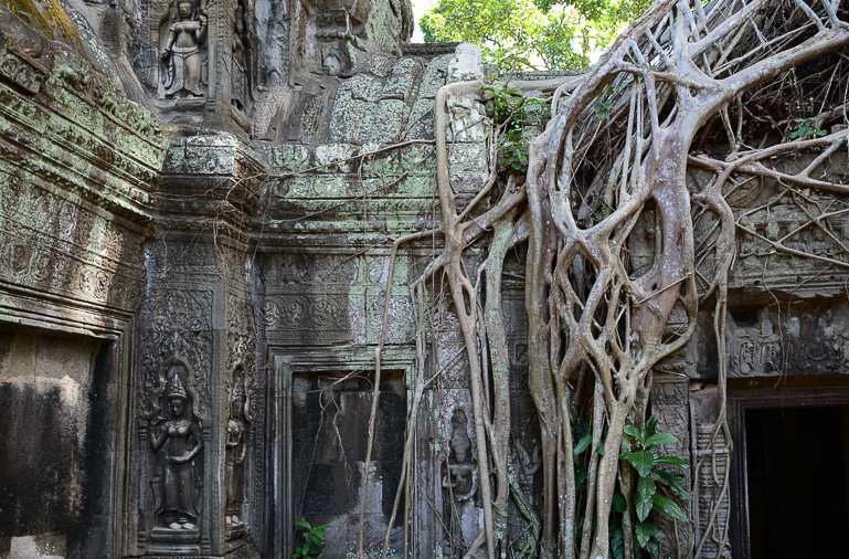 Travellers Insight Reiseblog Kambodscha-Rundreise Angkor Ta Phrom