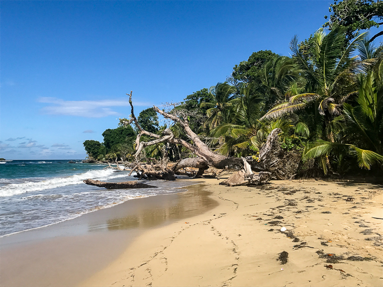 Travellers Insight Reiseblog Panama City Playa Polo