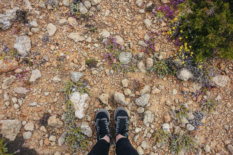 Travellers Insight Reiseblog Wandern auf Mallorca Wanderweg